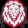 New Lion Media Group
