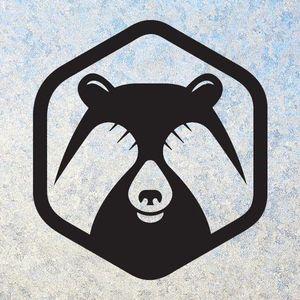 Shy Bear Brewing